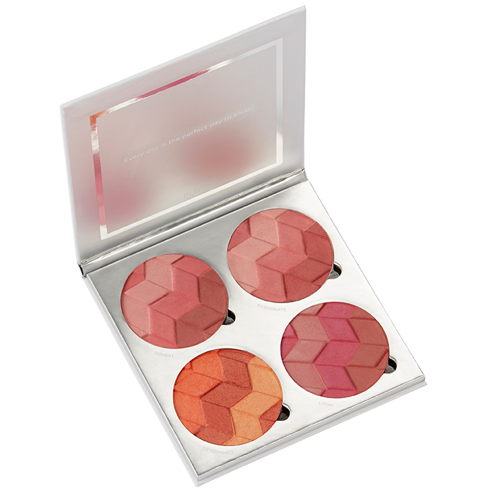 4-in-1 Blush Book